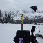 stele nella neve